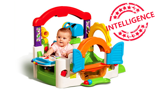Intelligence toy
